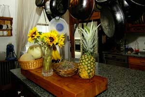 Sunfower arrangement decorates the kitchen at the Fitch Claremont Vineyard BnB, a Connecticut Bed and Breakfast Inn